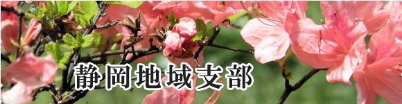 静岡地域支部